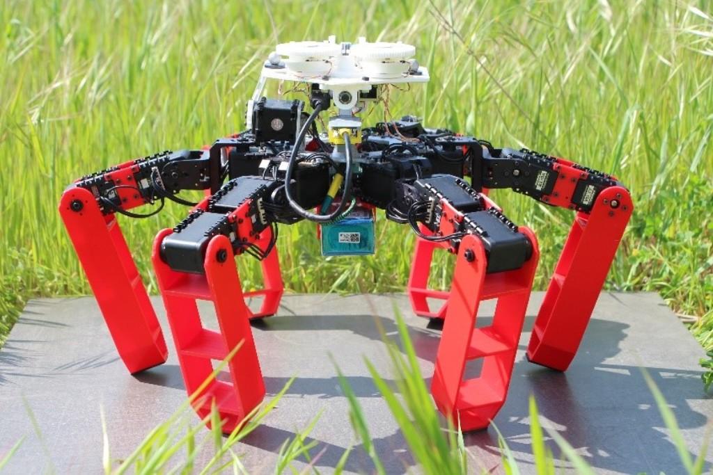 Роботы научились ориентироваться по Солнцу