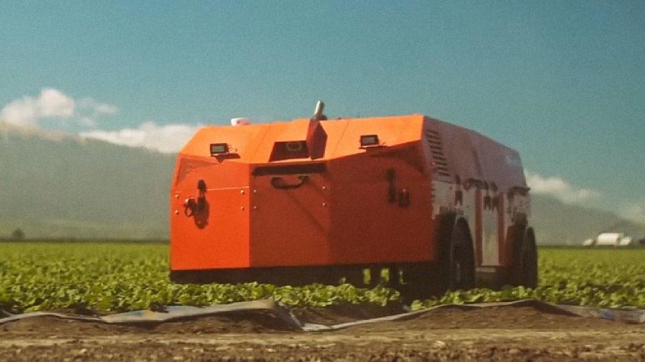 Робот прополет за вас сорняки